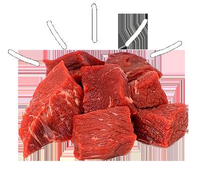 raw dog cat food diet